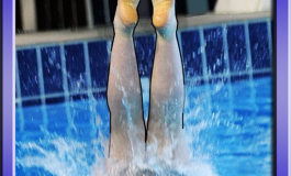 Cliff Diving Champ i DiveChamp